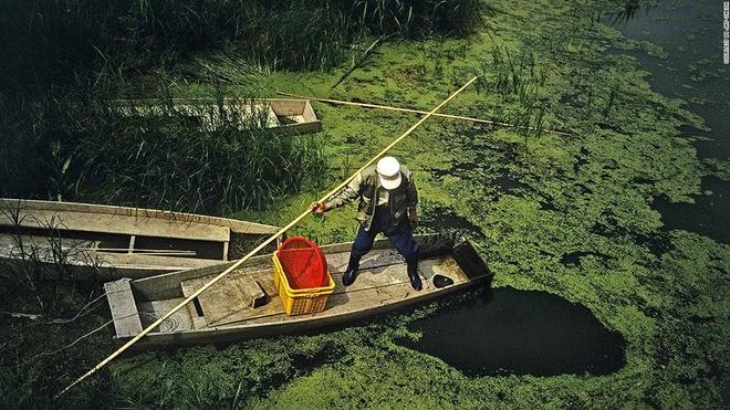 Nhung canh dep me hon o Han Quoc hinh anh 17 Đầm lầy Upo: Đầm lầy Upo trải rộng 5.550 km2 với hơn 1.000 loài động thực vật và đã được bảo vệ từ năm 1998. Thời điểm lý tưởng để tham quan nơi này là buổi sáng hoặc lúc hoàng hôn, du khách sẽ được chiêm ngưỡng khung cảnh đầm lầy dưới mưa, những loài ếch và đom đóm.
