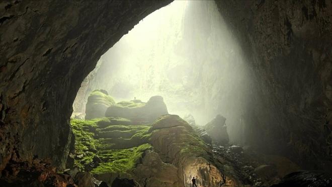 MC My: 'Trai nghiem Son Doong tuyet nhat doi toi' hinh anh 8 Khu rừng bên trong hang Sơn Đoòng giống như một thế giới xa lạ. Ảnh: Telegraph.