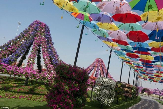 Một lối đi được che nắng bằng những chiếc ô rực rỡ sắc màu.