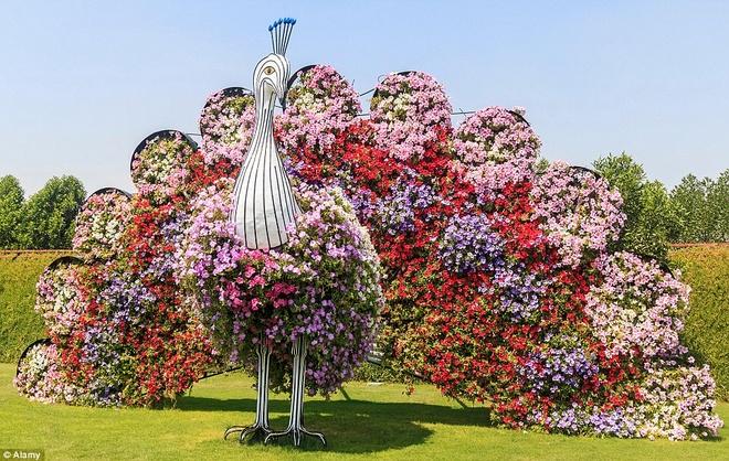 Các cụm hoa được tạo hình thành một con công.