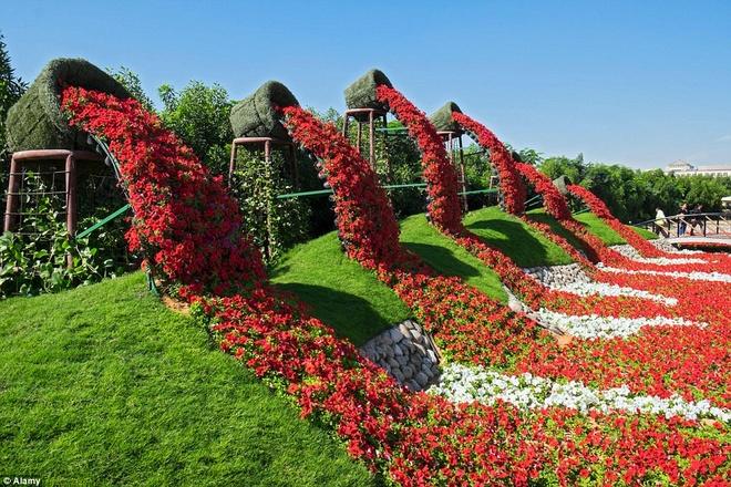 Khu vườn rộng lớn này có hơn 45 triệu bông hoa đang nở, với màu sắc rực rỡ.