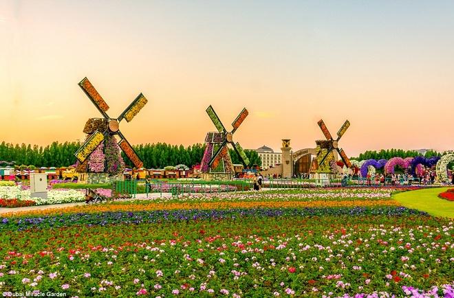 Với hàng rào là các cối xay gió, khu vườn hoa có chỗ đỗ xe, khu ngồi nghỉ, phòng cầu nguyện và các cửa hàng dành cho du khách.
