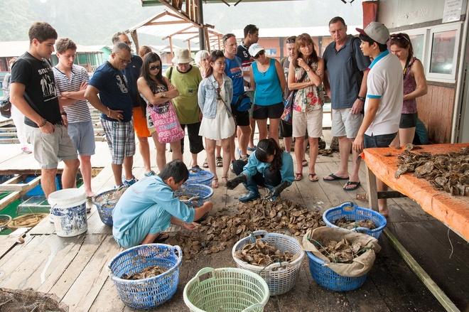 Tham quan làng ngọc trai: Tổ hợp nuôi cấy ngọc trai ở vụng Tùng Sâu là điểm đến yêu thích của nhiều du khách trong và ngoài nước. Tại đây, bạn sẽ được tìm hiểu quy trình nuôi cấy, tìm hiểu các loại ngọc trai và có thể mua về làm quà cho gia đình, bạn bè.