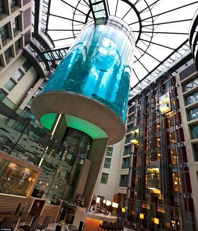 Be ca co ca thang may ben trong hinh anh 2 Với chiều cao 25 m và chứa hơn 1 triệu lít nước, đây là bể thủy sinh hình trụ lớn nhất thế giới.