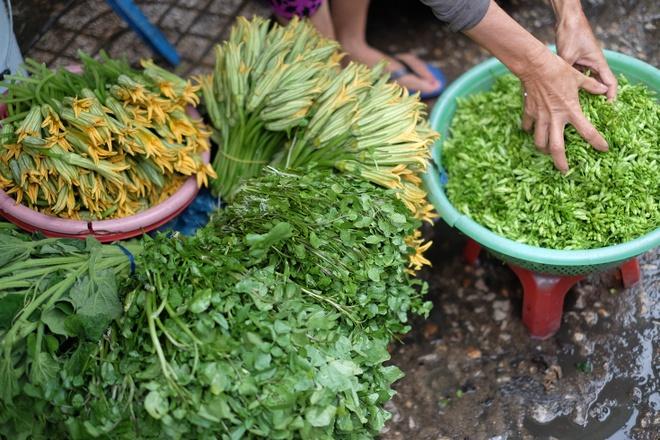 Tham vuong quoc mam o cho Chau Doc, An Giang hinh anh 8 Mùa nào thức nấy, du khách sẽ bắt gặp nhiều loại rau phổ biến của miền Tây như bông bí,