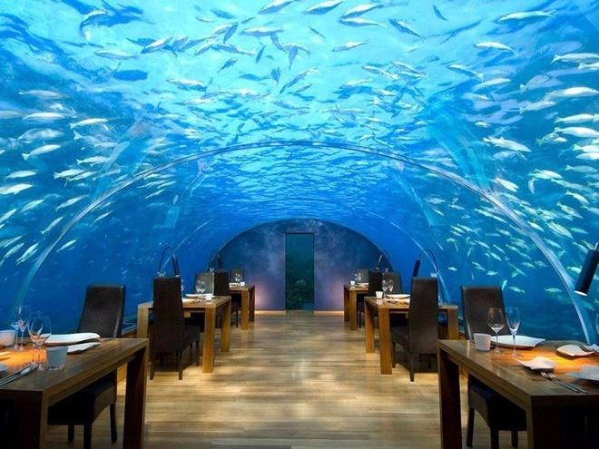 Nhung bua an sieu dat chi danh cho dai gia (phan 2) hinh anh 11 15. Nhà hàng dưới biển Ithaa, Alifu Dhaalu, Maldives (<abbr class=