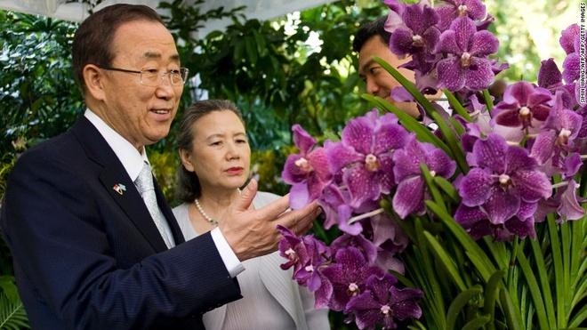 Rung mua nguyen sinh giua long Singapore hinh anh 11 Tổng thư ký Liên Hợp Quốc, ông Ban Ki-moon và vợ, bà Yoo Soon-taek, trước loài phong lan được đặt theo tên họ.