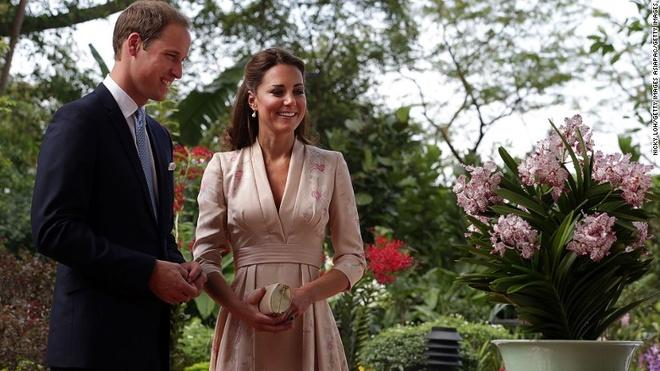 Rung mua nguyen sinh giua long Singapore hinh anh 8 Hoàng tử William và Công nương Catherine đã tới thăm Vườn thực vật vào năm 2012 và được chào đón với một loại phong lan được đặt theo tên họ.