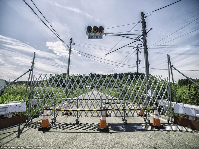 Hinh anh lanh nguoi o khu vuc nhiem phong xa cua Fukushima hinh anh 7