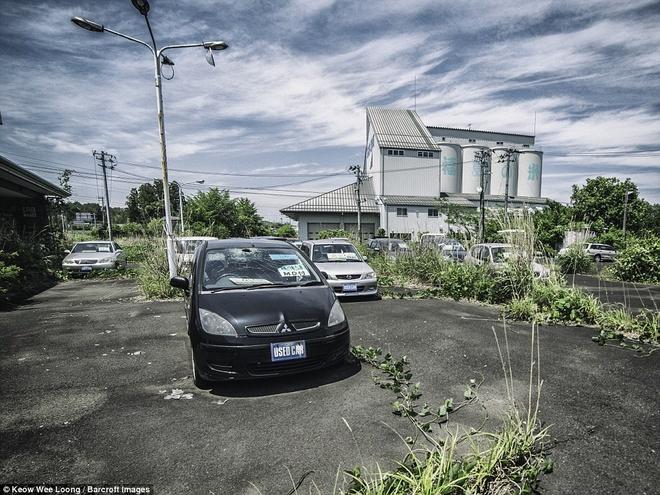 Hinh anh lanh nguoi o khu vuc nhiem phong xa cua Fukushima hinh anh 13