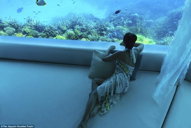 Loat resort sieu sang o Maldives danh cho nha giau hinh anh 8