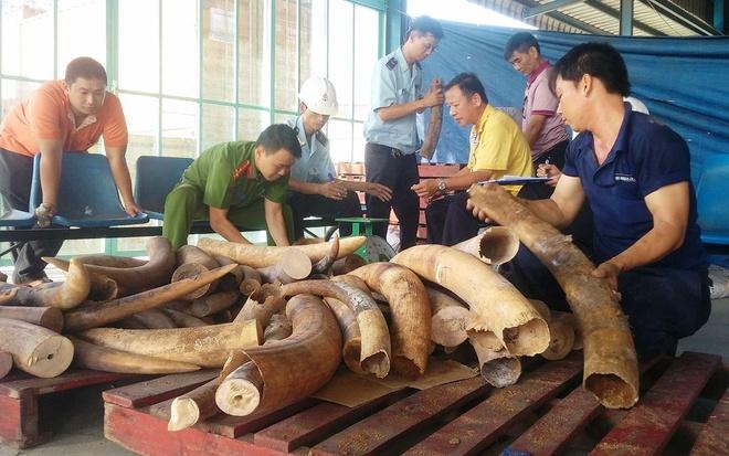 Them 2 container nga voi giau trong go nhap tu Chau Phi hinh anh