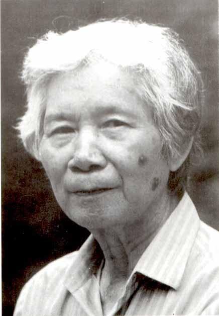 Hoa si Nguyen Tu Nghiem qua doi hinh anh 1