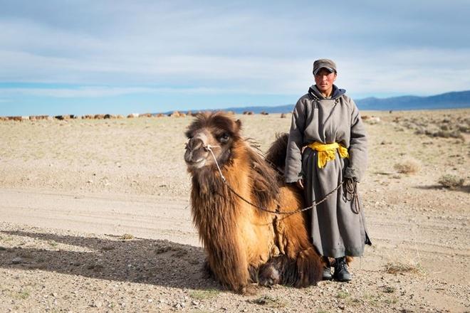 Trong hành trình của mình, họ đã chụp lại những kinh nghiệm và chia sẻ cho cả thế giới xem.Ảnh chụp lạc đà ở Mông Cổ.