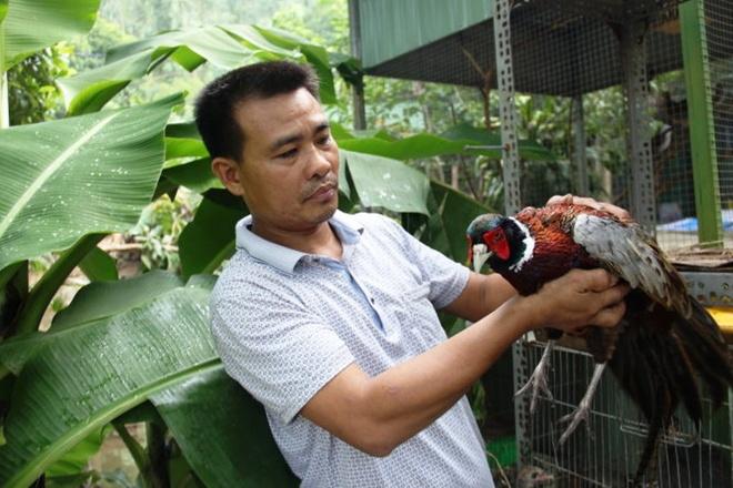 Chu quan nhau tha 'moi nhau' ve rung hinh anh 1 Ông Trần Văn Dũng và chú khỉ đuôi lợn nặng gần 10kg được ông giao lại cho Hạt kiểm lâm.