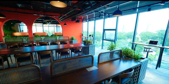 Khong gian xanh rong 800 m2 cho cong dong khoi nghiep o quan 3 hinh anh 1