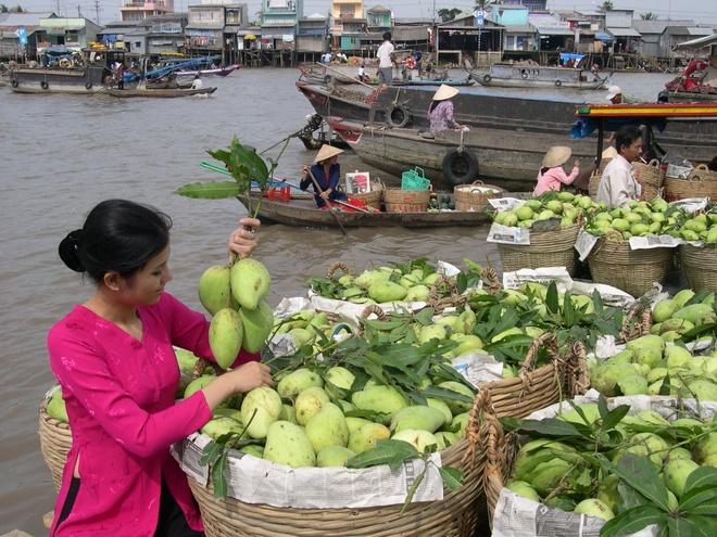Duong bay thang Da Nang - Can Tho: 'cu hich' cho du lich hinh anh 1 VietJet