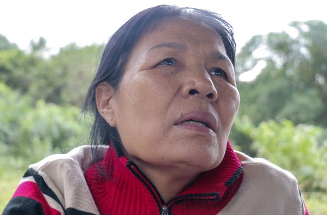 Lo nui o Nha Trang: 'Ai cuu em toi, chau toi voi' hinh anh 1