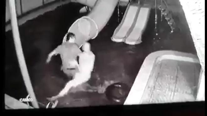 Chồng dìm vợ xuống nước rồi kéo lên bạo hành trước mặt con