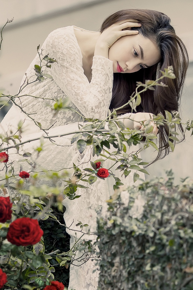 Ho Ngoc Ha chi manh tay cho album 'Moi tinh xua' hinh anh 1