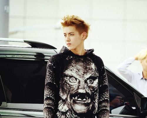 Style thoi trang bat on cua Kris (EXO) hinh anh
