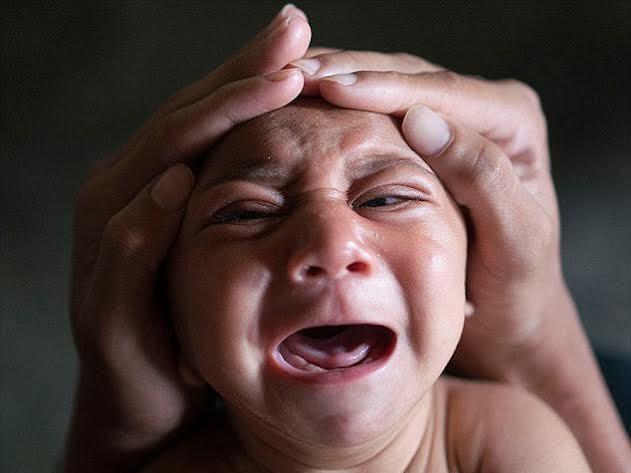 6 dieu can biet ve virus Zika hinh anh