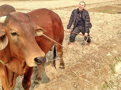 Xuan Hinh: 'Sang tap the duc, luot Facebook thay doi vui' hinh anh