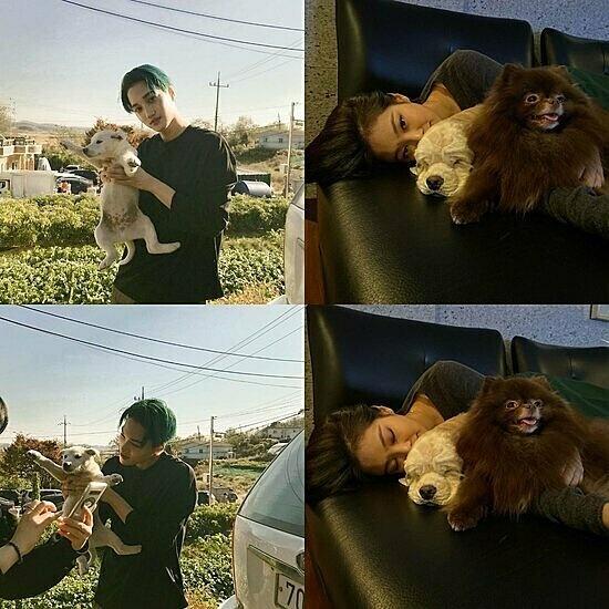 Jennie (Black Pink) va Kai (EXO) bi nghi van hen ho hinh anh 4