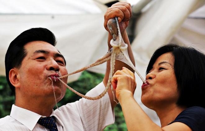 An bach tuoc song Han Quoc the nao de khong bi nghet tho? hinh anh