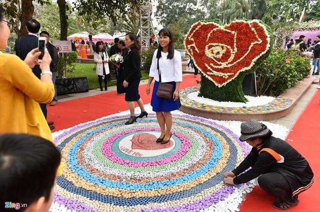 Nhung hinh anh xau xi trong le hoi hoa o Viet Nam hinh anh 2