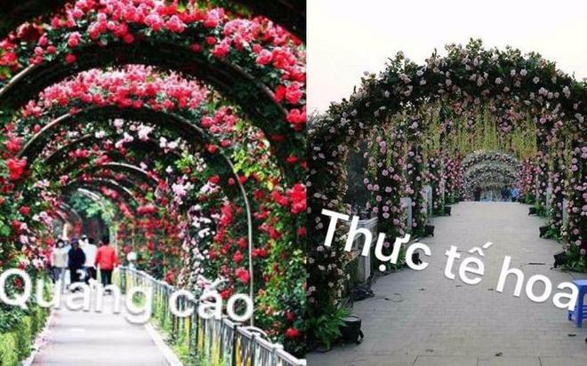 Nhung hinh anh xau xi trong le hoi hoa o Viet Nam hinh anh