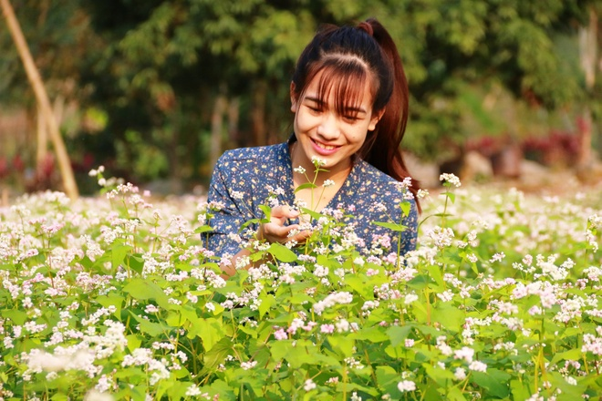 Vuon hoa tam giac mach o Ninh Binh hinh anh