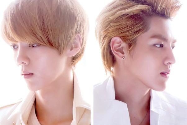 SM tuyen bo van so huu Kris va Luhan (EXO) hinh anh
