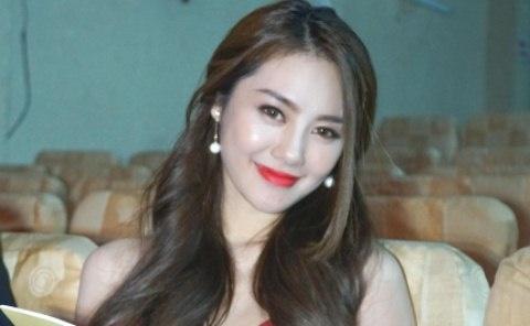Linh Chi: 'Lam Vinh Hai ung ho toi het minh' hinh anh