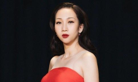 Leu Phuong Anh: 'Toi chia tay ban trai khi mang bau con trai thu 2' hinh anh