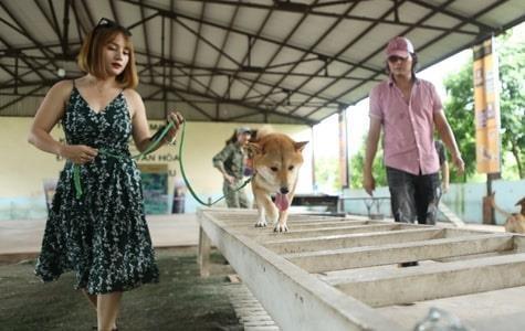 Cau chuyen ly ky ve chu cho thong minh dong phim 'Dat phuong Nam' hinh anh 1