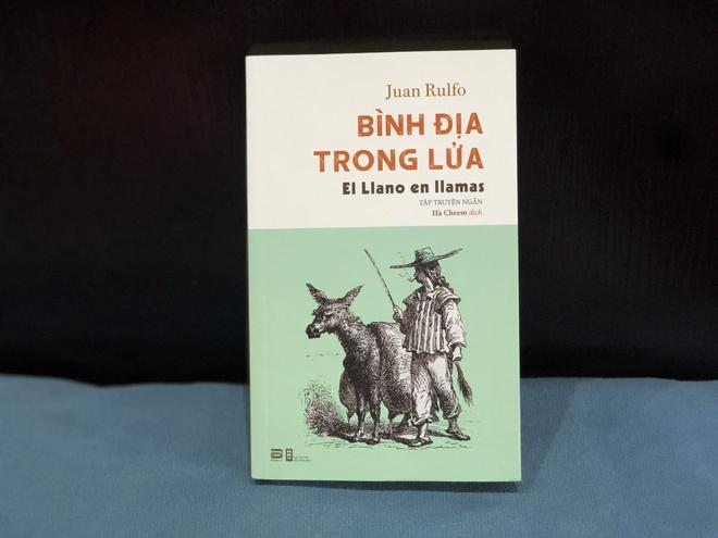 Binh Dia trong lua anh 1