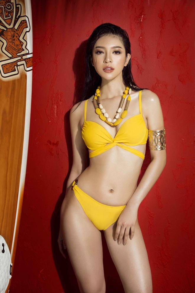 Top 45 Hoa hau Hoan vu Viet Nam rang ro voi bikini ben be boi hinh anh 11