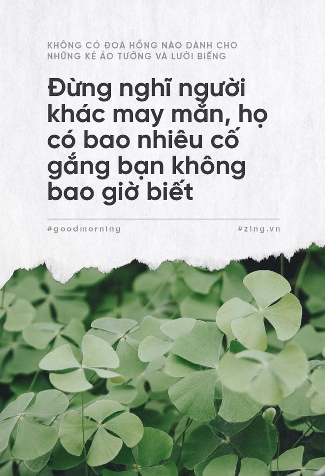 Khong co doa hong nao danh cho nhung ke ao tuong va luoi bieng hinh anh 2