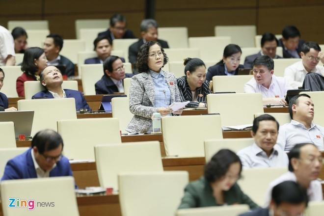 Dai bieu khong muon mien thi thuc cho nguoi nuoc ngoai vao Viet Nam hinh anh 3  - khanh_zing - Đại biểu không muốn miễn thị thực cho người nước ngoài vào Việt Nam