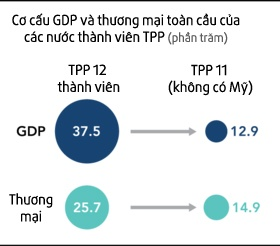 Viet Nam can nhac cac lua chon de dam phan lai TPP anh 2