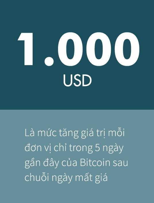 Gia Bitcoin bat tang tro lai, danh dau thoi ky khong co Trung Quoc hinh anh 1