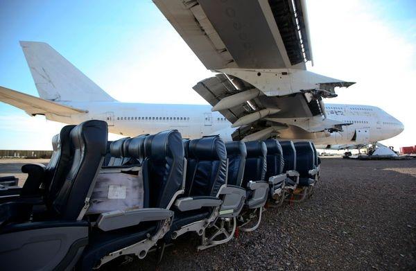747 cu hoi sinh anh 1