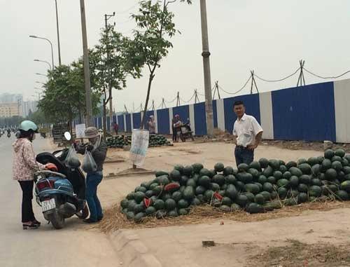 Hoa qua 5.000 dong/kg do dong khap via he Ha Noi hinh anh