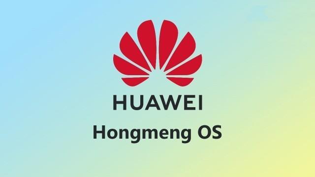 Day co the la vu khi bi mat cua Huawei hinh anh 2