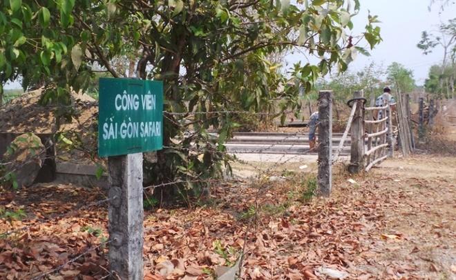 74% don khieu nai o TP.HCM sai su that hinh anh