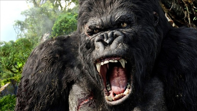 Cuc truong Cuc Dien anh: 'King Kong den, ta duoc gi?' hinh anh 2