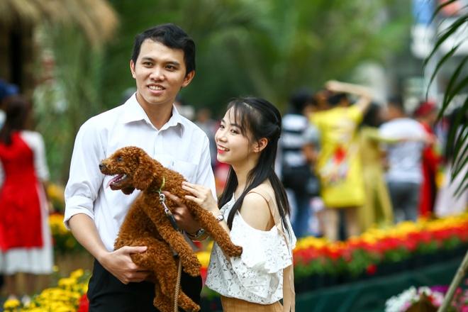 Hoi hoa xuan khu nha giau Phu My Hung hinh anh
