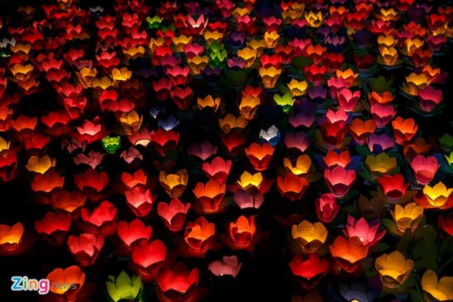 Hang nghin hoa dang lap lanh tren song Sai Gon hinh anh