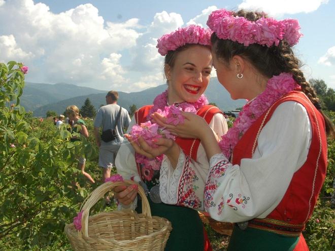 Thung lung hoa hong tho mong giua nui doi Bulgaria hinh anh